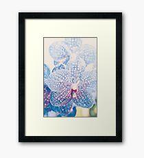 Orchidee abstrakt Gerahmtes Wandbild