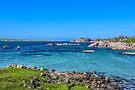 Fionnphort Bay, Isle of Mull, Scotland by Beth A.  Richardson