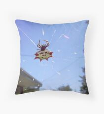 Spinybacked Orbweaver Throw Pillow