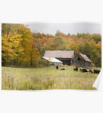 Old farm landscape Poster