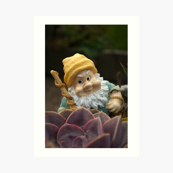 Sunnyboy the Garden Gnome Art Print