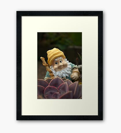 Sunnyboy the Garden Gnome Framed Print
