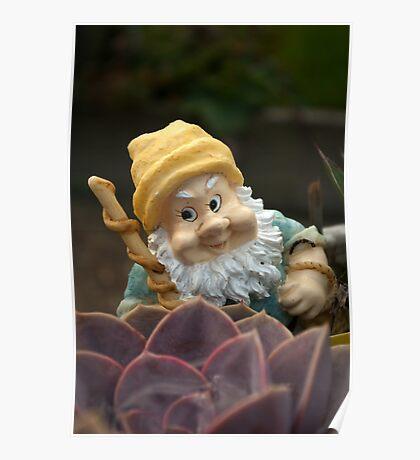 Sunnyboy the Garden Gnome Poster