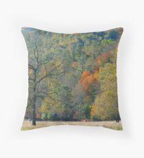 Meadow, Catalooche, GSMNP Throw Pillow