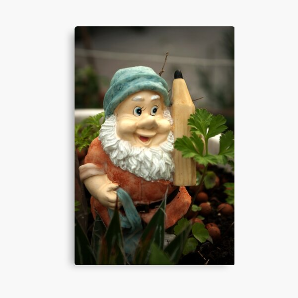 Doodlethumb the Garden Gnome Canvas Print