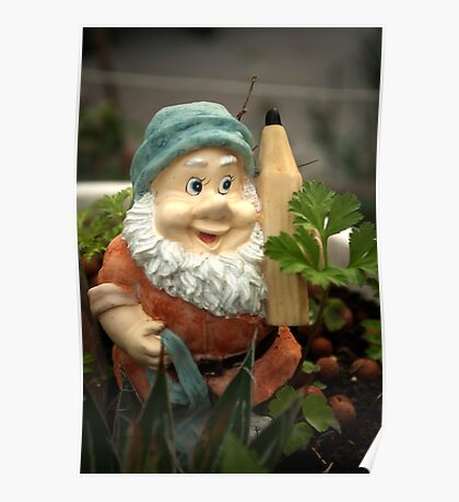 Doodlethumb the Garden Gnome Poster