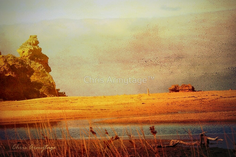 Waiting  by Chris Armytage™