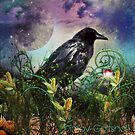 Harvest Crow welcomes autumn by Edgot Emily Dimov-Gottshall
