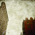 flatiron red brick by Sonia de Macedo-Stewart