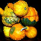 Gourds by jpryce