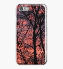Winter dawn iPhone Case/Skin