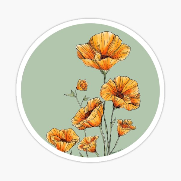 Coquelicots de Californie Sticker