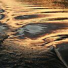 Hydro Gold by Karen K Smith