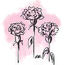 Inked Pink Carnation by Katie Rosell