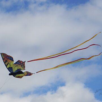 Kite Flying at The Balloon Fest 2010  by ChereeCheree