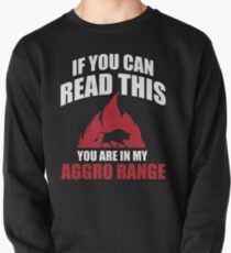 If you can read this you are in my aggro range Pullover
