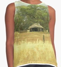 Thatched roof Barn   Contrast Tank