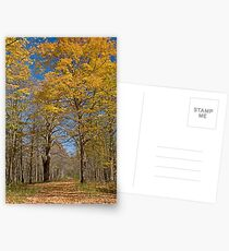 Along the path Postcards