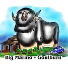 Big Marino - Goulburn by David Fraser