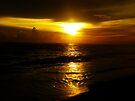 Sunset Surf by Dan Perez