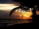 Sunset Beach by Dan Perez