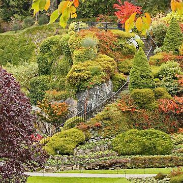 Butchart Gardens Stairway to Heaven by AnnDixon