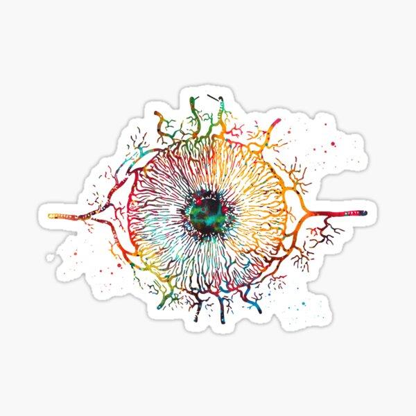 Iris, ojo humano Pegatina