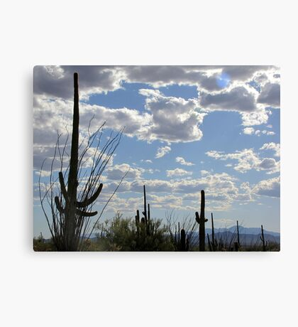 Desert Skies Canvas Print