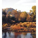 Payette River by Indelibly-Yours