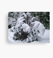 Snow Load Leinwanddruck