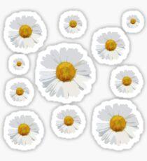 Pegatina Collage bonito de la flor blanca de la margarita - perfecto para los diarios de la bala