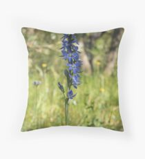 Great Sun-orchid (Thelymitra aristata) Throw Pillow