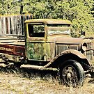 Retired Flat Bed by Linda Bianic