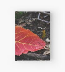 Fall solitaire Hardcover Journal