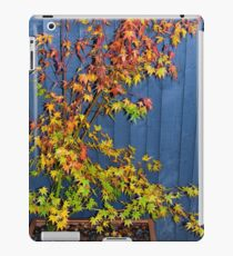 Autumnal Acer  iPad Case/Skin