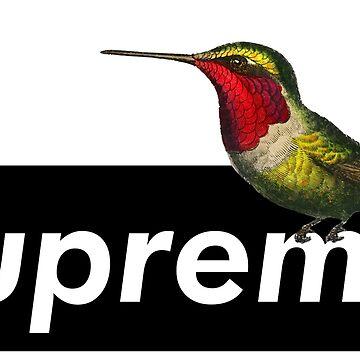 Colibri Logo by sanseffort
