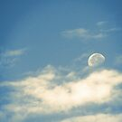 The Moon in Daylight 1 by leebradford