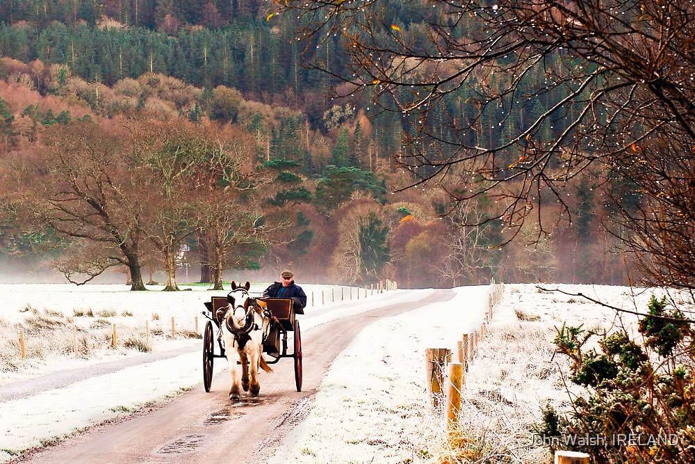 Jaunting Car, Killarney, Co Kerry Ireland by John Walsh, IRELAND