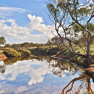 Burrawing Creek - Eastern Eyre Peninsula by ianb7