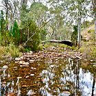Mambray Creek - Mount Remarkable National Park - Southern Flinders Ranges by Ian Berry