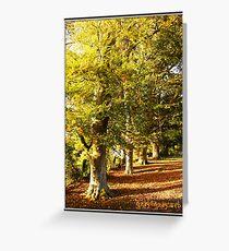 Boughton Trees Greeting Card