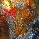 Colour Blaze by Brian Downs