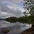 Lough Key by Martina Fagan