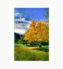 Autumn hdr Art Print