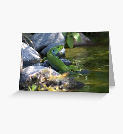 Balkan Green Greeting Card