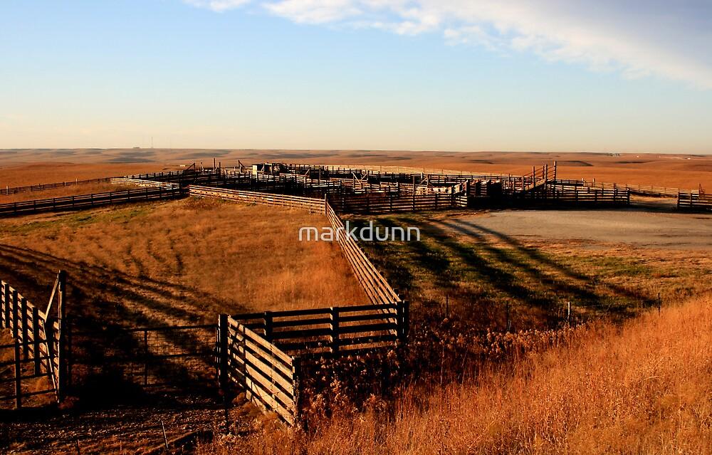 Flint Hills, KS by markdunn