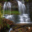 Split Falls by Chintsala