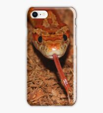 Corn Snake iPhone Case/Skin