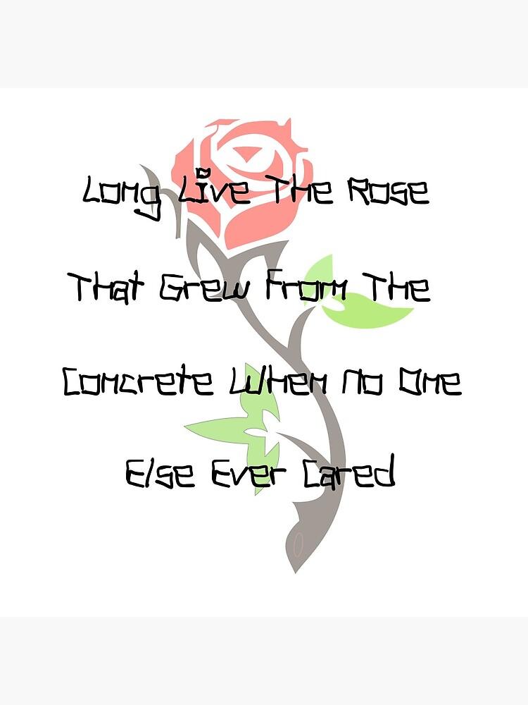Larga vida a la rosa que surgió del hormigón cuando a nadie más le importaba de Donsean22