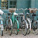 Vintage bicycles by Carla Watkins